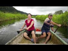 """2.5%"" - A film promoting conscious travel in Costa Rica's Osa Peninsula   #conscioustravel #CostaRica"