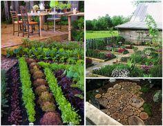 Ever So Emily: Backyard Vegetable Garden