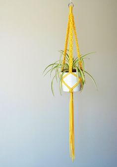 Macrame Plant Hanger / Indoor Plant Holder / 52 Inches Long / White / Gray…