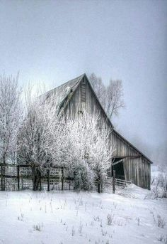 This winter looks so familiar...