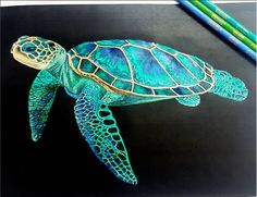 Sea Turtle (page 42) by Wendy5555