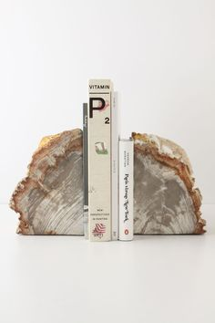 Petrified Wood Bookends - Anthropologie.com #Anthropologie #PinToWin