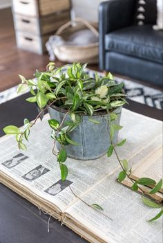 What is my absolute favorite part of finishing up a Fixer Upper project? That's easy—adding plants. Honestly, I could spend hours in a greenhouse asking questions, picking things out and soaking it all in. To me, plants bring a space...