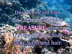 A gem from the ancient Ayurvedic beauty world shines upon us, and it is something no less than 'astounding'! Literally. It's a treasure that's indeed a gift from the undersea world and surprisingly has been discovered across all cultures and civilizations – celebrated for its transformative impact on the body, skin, nails, and hair! Unveil the dark, mysterious secrets of the underwater world for a healthy body, flawless skin, strong beautiful nails, and lush, voluptuous hair.