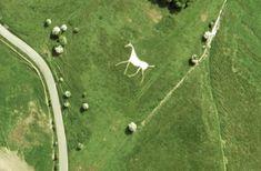Borad Hinton or Hackpen White Horse - The Wiltshire White Horses   Alexandra May
