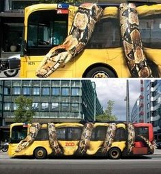 Bus of Copenhagen Zoo- this is an amazing paint job, and GREAT advertisement!: