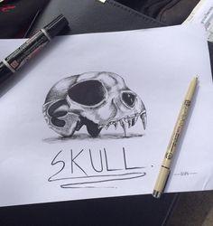 Skull Animal.