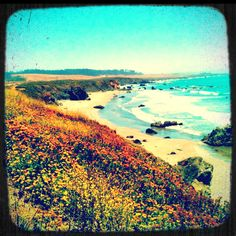 San Simeon, California along the PCH... best drive I've ever done.  :)