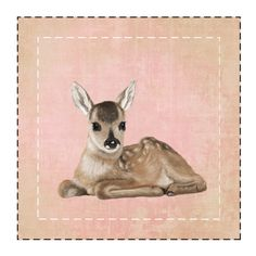 """A small fawn White Canvas 6"""" x 6"""" (Stretched)   SnapMade.com ($26) ❤ liked on Polyvore featuring home, home decor, wall art, photography wall art, canvas wall art, canvas home decor, stretched canvas and white canvas wall art"""