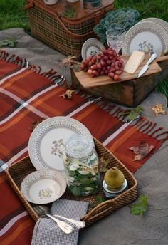 Fall picnic, grapes and a blanket