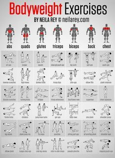 근육 부위별 맨몸운동으로 키우는 방법 각각 6가지 종류