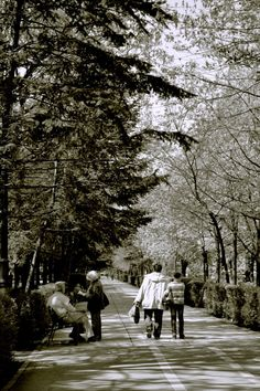 Charming Bucharest: Spring Shadows Artistic Photography, More Photos, Romania, Shadows, Charmed, Spring, Bucharest, Art Photography, Fine Art Photography