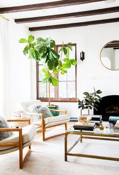 Designers Agree NEVER Splurge On This One Thing