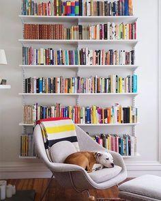 "4,087 Me gusta, 39 comentarios - #RWBookClub (@rwbookclub) en Instagram: ""All we need in life. 📚 🐶 #DogsWhoRead #DreamReadingNook #RWBookClub (📸 @danielkanter)"""