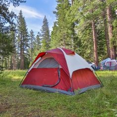 Don't let summer end without checking out one of these getaways near Reno and Lake Tahoe that are sure to make you a happy camper!
