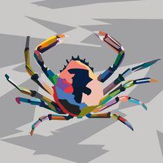 Granseola. Adobe Illustrator. Tecnica Wpap. Autore Gaia Meggetto 3Al