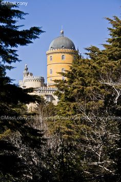 Pena's Palace by MissLoony