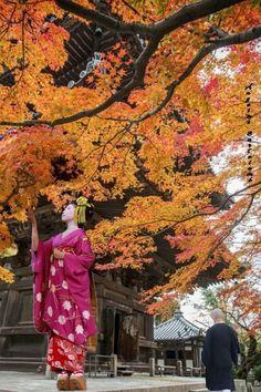 Templo Shinnyo Do #sakura #japon #kyoto #geisha #monje #fiesta #otoño