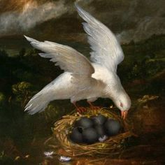 NEST IN PEACE - Limited Edition 10 of 10