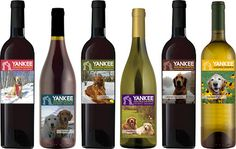 Just in time for those slow summer nights: Yankee's own wine collection! A portion of each bottles proceeds goes right back into YGRR's Mission.