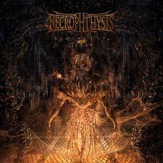Necropthysis - Diminution of Flesh