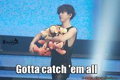 Yongguk and his tigers... ♥.♥