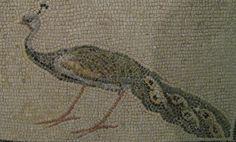 Roman Peacock Mosaic