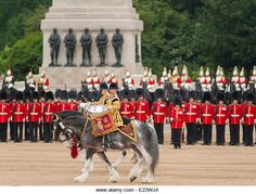 Horse Guards Parade, London UK. 14th June 2014. Drum Horses of the Massed