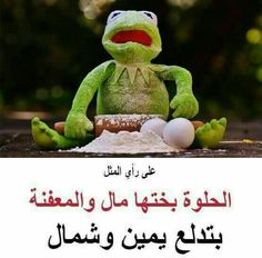 Sarcastic Humor, Funny Jokes, Hilarious, Arabic Jokes, Funny Arabic Quotes, Funny Frogs, Action Verbs, Kermit The Frog, Funny Comments