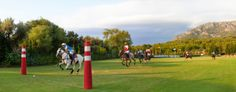 The #realestate business, like the game of #polo, is all about #teamspirit, dynamism and the right #strategy.