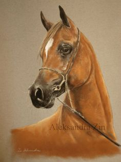 Arabian in soft pastels