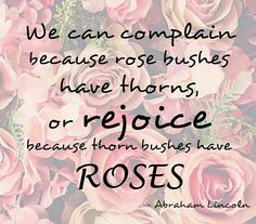 We Can Complain Because Rose Bushes Have Thorns, Or Rejoice Because Thorn Bushes Have Roses | Abraham Lincoln | Gardening Quotes