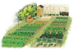 Aquaponics System For You Potager Bio, Potager Garden, Herb Garden, Vegetable Garden, Aquaponics System, Sloped Garden, Garden Planning, Container Gardening, Garden Design