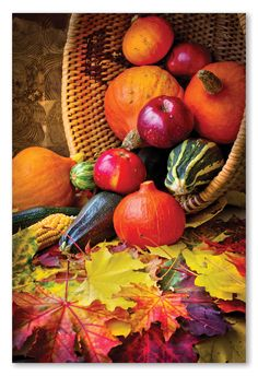 autumn concept with seasonal fruits and vegetables/organic food background; autumn harvest with farmers vegetable fruits on dark wooden background/thanksgiving day concept Bowl Image, 300 Piece Puzzles, Fruits And Veggies, Vegetables, Fall Fruits, Seasonal Fruits, Harvest Basket, Autumn Scenes, Bon Appetit