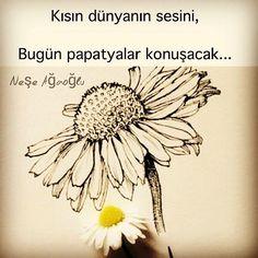 Kısın dünyanın sesini, Bugün papatyalar konuşacak... - Neşe Ağaoğlu (Kaynak: Instagram - neseagaogluu) #sözler #anlamlısözler #güzelsözler #manalısözler #özlüsözler #alıntı #alıntılar #alıntıdır #alıntısözler #şiir #edebiyat