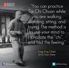 Martial arts philosophy and inspirational quotes from shihan essence