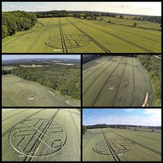Crop Circle at Upper Rapeland Wood, nr Horsham, West Sussex. Horsham, Crop Circles, Ancient Mysteries, Weird, June