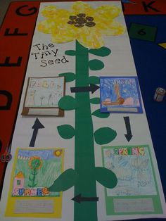 Kindergarten activities, tiny seed activities, spring activities, science a Tiny Seed Activities, Spring Activities, Book Activities, Preschool Activities, Kindergarten Art Lessons, Kindergarten Reading, Kindergarten Classroom, The Tiny Seed, Author Studies