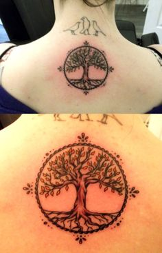 tattoo arbre de vie photo