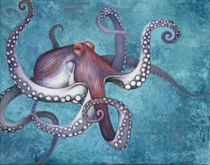 Octopus by sruchte.deviantart.com on @deviantART