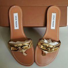 STEVE MADDEN FLIP FLOPS Nice gold with buckle detail Sanibel flip flops. Leather upper.   No wear on foot bed. Minimal wear on heels  ( see third picture). Steve Madden Shoes Sandals