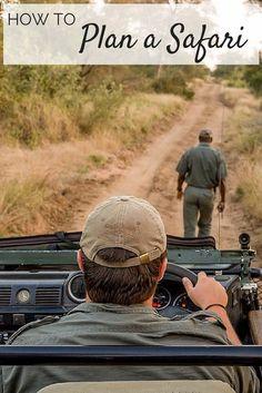 Hoe plan je een safari in Zuid-Afrika? Je leest het in dit artikel ter voorbereiding van je roadtrip.