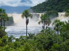 Canaima - Venezuala. Having Polar in the Jungle