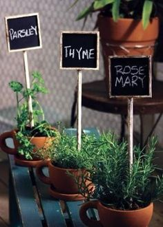 Herb Pots, Just Use A Sharpie To Decorate The Pot So You Know Which Plant  Is What. Cute Idea If Your A Novice Like Me! | Pinterest | Herbs