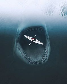 This is a stunning kayaking picture! said poster before i Kayak Pictures, Shark Pictures, Hipster Vintage, Style Hipster, Megalodon Shark, Shark Art, Wale, Great White Shark, Ocean Creatures