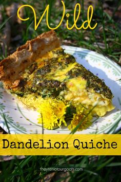 Wild Dandelion Quiche - They're Not Our Goats - Healty fitness home cleaning Quiches, Vegan Recipes, Cooking Recipes, Delicious Recipes, Cooking Corn, Cooking Turkey, Dandelion Recipes, Edible Food, Flower Food