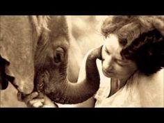 Daphne Sheldrick, founder of the David Sheldrick Wildlife Trust and the first person to pioneer the successful milk formula and husbandry needed to raise a m. Elephants Never Forget, Save The Elephants, Amor Animal, Mundo Animal, Beautiful Creatures, Animals Beautiful, Miguel Angel Garcia, Baby Animals, Cute Animals