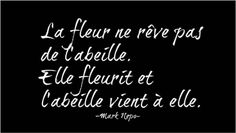 Fb Quote, Quote Citation, Some Quotes, Words Quotes, Sayings, French Words, French Quotes, Jolie Phrase, Some Words