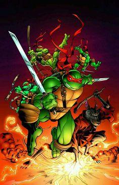 Teenage Mutant Ninja Turtles Master Splinter TMNT 30th Anniversary TMNT IDW