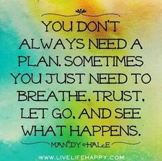 """""""You don't always need a plan. Sometimes you just need to breathe. Trust. Let go. And seevwhat happens.""""- Mandy Hale"""
